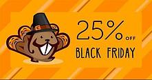 Beaver Builder Black Friday